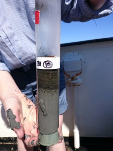 Sedimentpropp